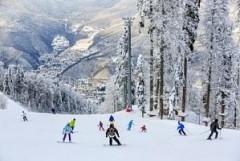 Гостиничный комплекс на горных курортах Сочи забронирован на треть на зимний сезон