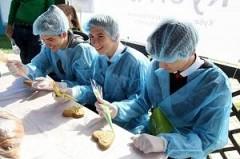 На Кубани стартовал первый отраслевой чемпионат в сфере сельского хозяйства AgroSkills