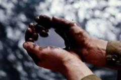 В Мексике обнаружено крупнейшее за 15 лет месторождение нефти