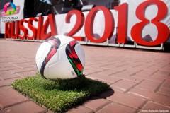 Подготовительные работы к ЧМ-2018 на Кубани завершат весной
