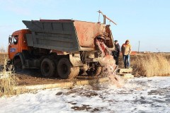 В Веселовское водохранилище выпустили 20 тонн толстолобика
