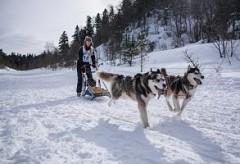 В Лагонаки прошли высокогорные лыжные гонки на собачьих упряжках