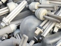 В Краснодаре пройдет экологическая акция по сбору опасных отходов