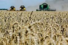 На льготное кредитование аграриев Кубани выделили 600 млн рублей