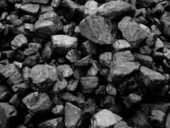 Донские полицейские задержали угольного воришку