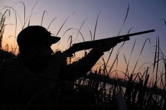 В КБР завершено следствие по делу о незаконной охоте
