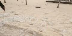 """""""Жёлтый снег"""" не связан с деятельностью промпредприятий Ставрополья"""