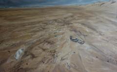 Выставка «Земля» супругов Рощенко откроется 8 апреля в «Галерее Ларина»