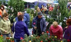 В Ростове открылась выставка «Дачный сезон. Моя усадьба»