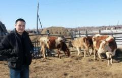 Глава Минсельхоза отчитался перед президентом РФ о льготном кредитовании фермеров