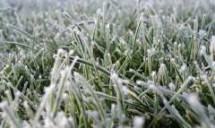 В юго-восточных предгорьях Краснодарского края ожидаются заморозки