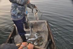 В Славянском районе Кубани браконьеры получили условные сроки