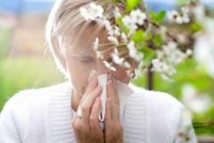 На Яндекс.Погоде появилась карта пыльцы для аллергиков Краснодара