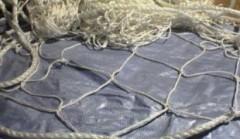 За нарушение правил рыболовства в акватории Азовского моря жители Кубани заплатят штраф