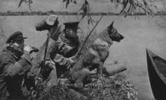 В ФСБ вспоминают о подвигах пограничников в годы Великой Отечественной войны