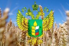 «Горячие линии» по актуальным вопросам работают в Минсельхозе Кубани
