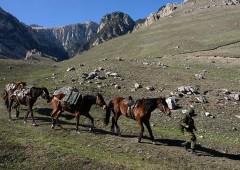 Уникальный вьючно-транспортный взвод ЮВО в КЧР начал доставку грузов в высокогорные районы Кавказского хребта
