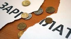На председателя СПК «Кануковский» в Калмыкии завели уголовное дело о невыплате зарплаты