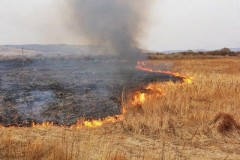 На Кубани сохранится чрезвычайная пожароопасность