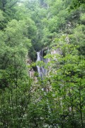 Сочинские спасатели вывели из леса заблудившихся туристов
