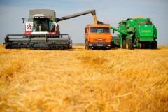 На Ставрополье аграрии приступили к уборке урожая