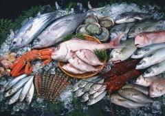 Крым возглавил рейтинг регионов России с самой вкусной рыбой и морепродуктами