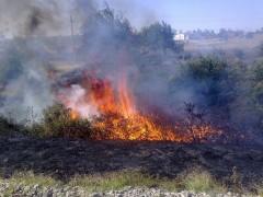 На Кубани в ближайшие дни сохранится чрезвычайная пожароопасность