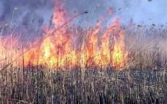 На Кубани установилась чрезвычайная пожароопасность