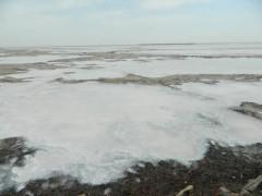 Аукцион на право пользования недрами озера самосадочной соли в Калмыкии признан несостоявшимся