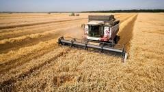 На Дону собрали свыше 1 млн тонн зерна