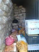 11 тонн замороженных свиных шкур хранилось в подпольном цехе Таганрога