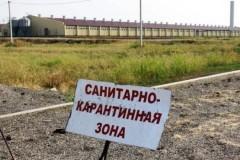 В Ростовской области на российско-украинской границе установили знаки карантинной полосы