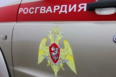 В Архипо-Осиповке росгвардейцы задержали мужчину по подозрению в грабеже