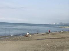 В Сочи проведен межведомственный рейд по проверке соблюдения правил рыболовства