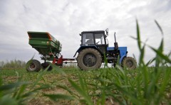 Сельхозкооперативы Кубани получат поддержку