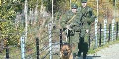В горах Сочи задержаны гастарбайтеры без пропусков в пограничную зону