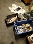 Донские пограничники задержали двух браконьеров с краснокнижной рыбой